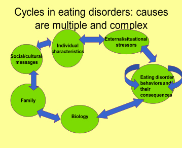 eating and personality disorders essay